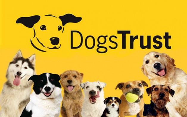 dogs-trust